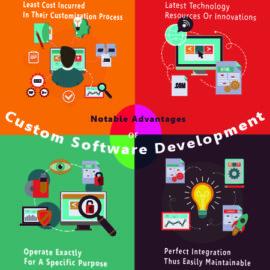 Advantages of Custom Software Development